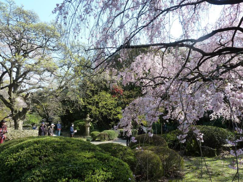 japan i april
